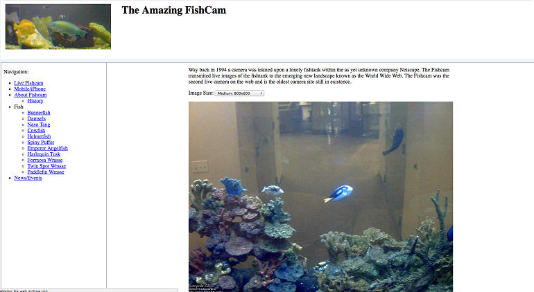 The Amazing FishCam
